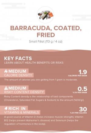 Barracuda, coated, fried