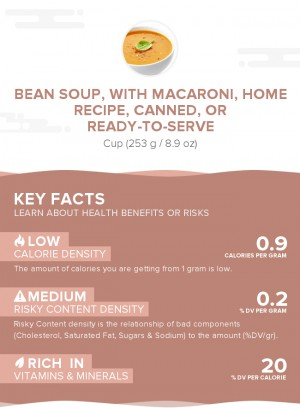 Bean soup, with macaroni, home recipe, canned, or ready-to-serve