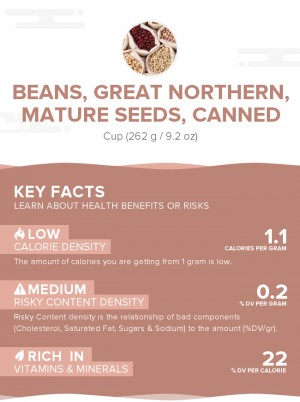 Beans, great northern, mature seeds, canned