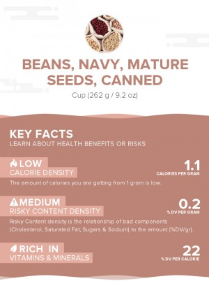 Beans, navy, mature seeds, canned