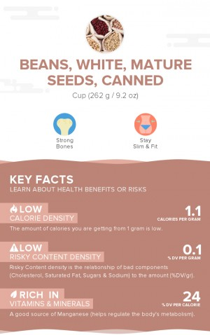 Beans, white, mature seeds, canned