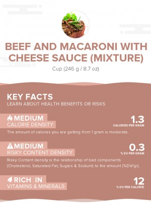 Beef and macaroni with cheese sauce (mixture)