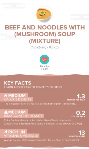 Beef and noodles with (mushroom) soup (mixture)