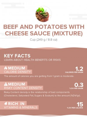 Beef and potatoes with cheese sauce (mixture)
