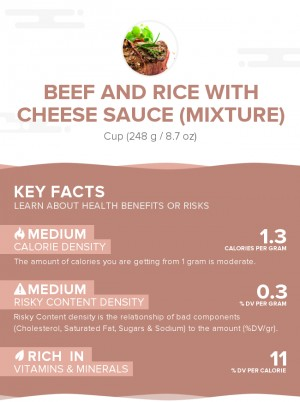 Beef and rice with cheese sauce (mixture)