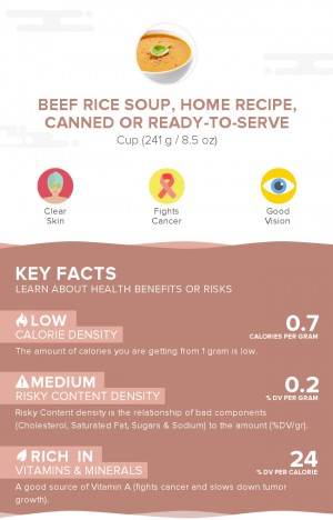 Beef rice soup, home recipe, canned or ready-to-serve