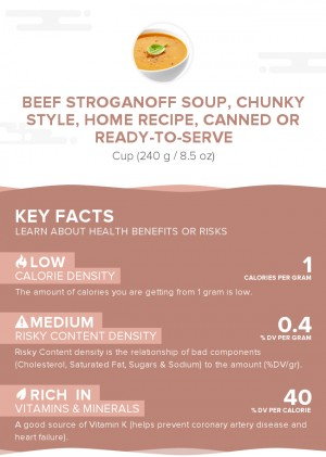 Beef stroganoff soup, chunky style, home recipe, canned or ready-to-serve