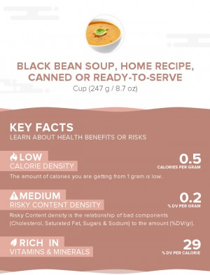 Black bean soup, home recipe, canned or ready-to-serve