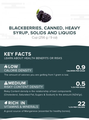 Blackberries, canned, heavy syrup, solids and liquids
