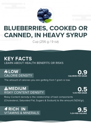 Blueberries, cooked or canned, in heavy syrup