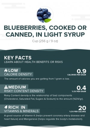 Blueberries, cooked or canned, in light syrup