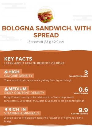 Bologna sandwich, with spread