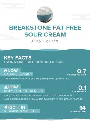 Breakstone Fat Free Sour Cream