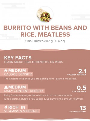 Burrito with beans and rice, meatless