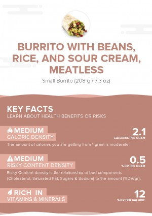Burrito with beans, rice, and sour cream, meatless
