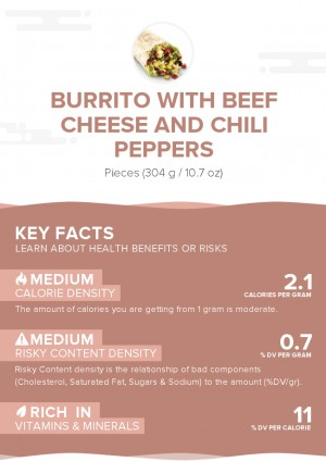 Burrito With Beef Cheese And Chili Peppers