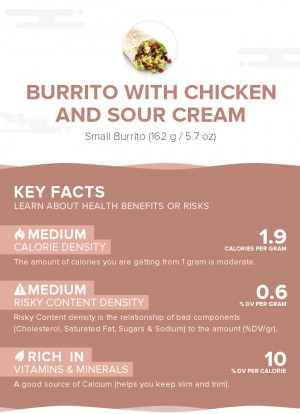 Burrito with chicken and sour cream