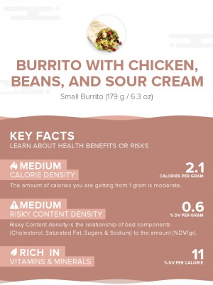 Burrito with chicken, beans, and sour cream
