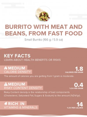 Burrito with meat and beans, from fast food
