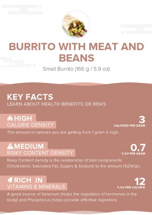 Burrito with meat and beans