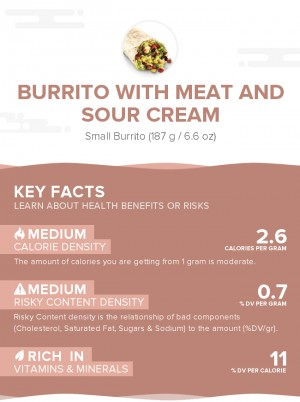 Burrito with meat and sour cream