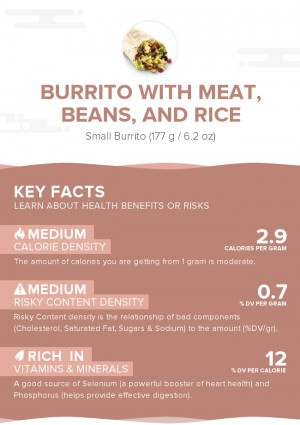 Burrito with meat, beans, and rice