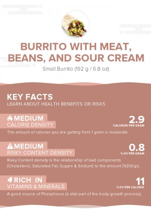 Burrito with meat, beans, and sour cream