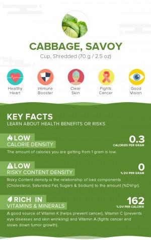 Cabbage, savoy, raw