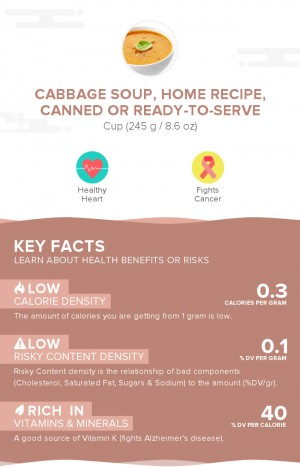 Cabbage soup, home recipe, canned or ready-to-serve