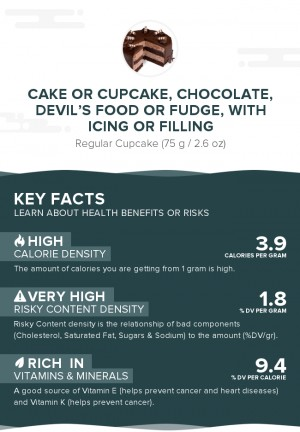 Cake or cupcake, chocolate, devil's food or fudge, with icing or filling