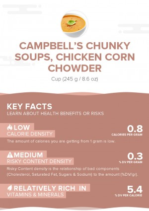 CAMPBELL'S CHUNKY Soups, Chicken Corn Chowder