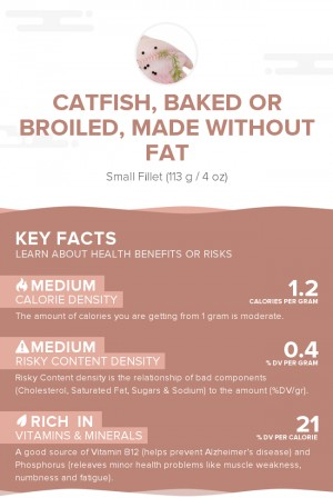 Catfish, baked or broiled, made without fat