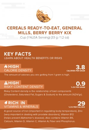 Cereals ready-to-eat, GENERAL MILLS, BERRY BERRY KIX