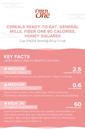 Cereals ready-to-eat, GENERAL MILLS, FIBER ONE 80 Calories, Honey Squares