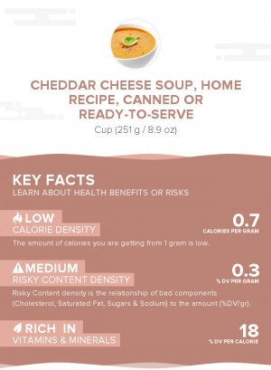 Cheddar cheese soup, home recipe, canned or ready-to-serve