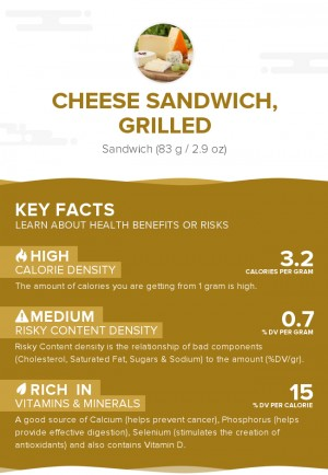 Cheese sandwich, grilled