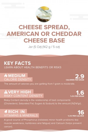 Cheese spread, American or Cheddar cheese base