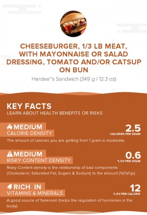 Cheeseburger, 1/3 lb meat, with mayonnaise or salad dressing, tomato and/or catsup on bun