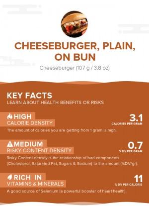 Cheeseburger, plain, on bun