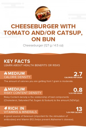 Cheeseburger with tomato and/or catsup, on bun