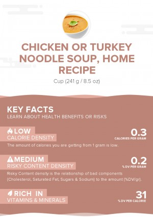 Chicken or turkey noodle soup, home recipe