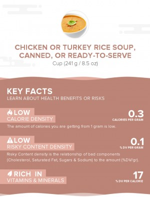 Chicken or turkey rice soup, canned, or ready-to-serve
