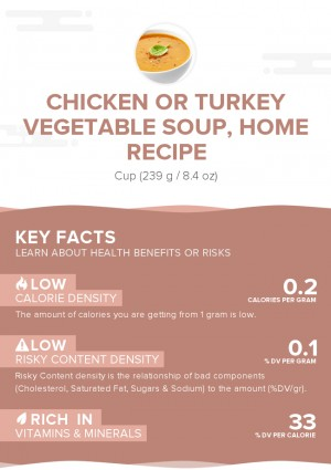 Chicken or turkey vegetable soup, home recipe