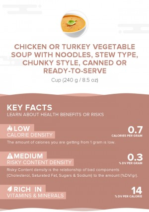 Chicken or turkey vegetable soup with noodles, stew type, chunky style, canned or ready-to-serve