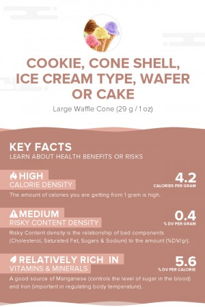Cookie, cone shell, ice cream type, wafer or cake