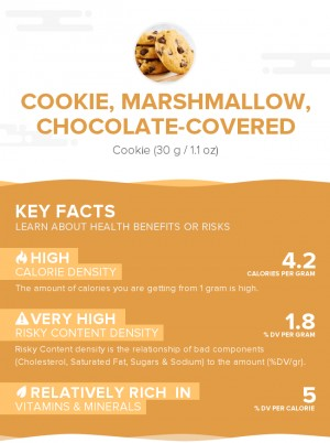 Cookie, marshmallow, chocolate-covered