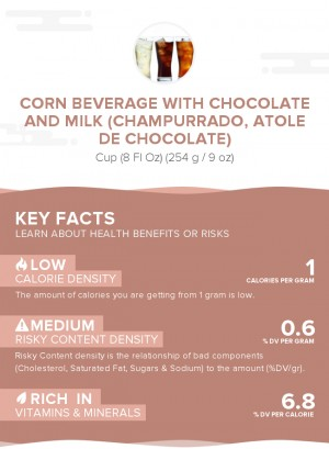 Corn beverage with chocolate and milk (Champurrado, Atole de Chocolate)