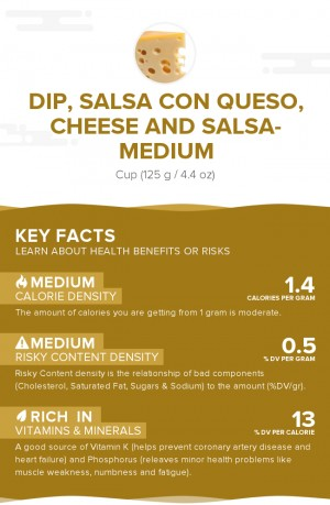 Dip, salsa con queso, cheese and salsa- medium