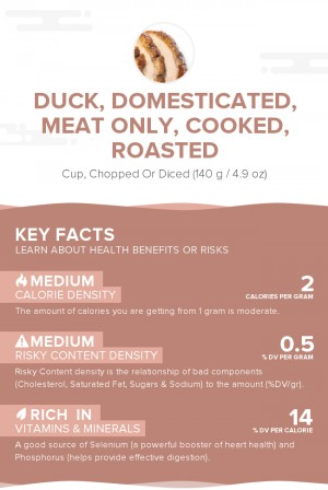 Duck, domesticated, meat only, cooked, roasted