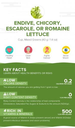 Endive, chicory, escarole, or romaine lettuce, raw